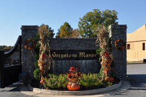 Forsyth homes for sale at Greystone Manor